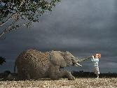 Child With Elephant