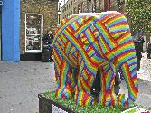 Colour Strip Elephant