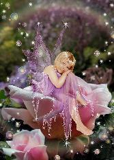 Cute Angel In Pink Rose