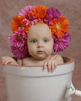 Flower Covered Baby