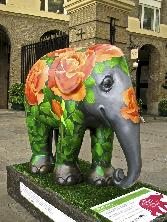 Flower On Elephant