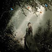 Girl In Black Gown Going Alone In Forest