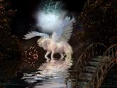 White Horse Near Bridge